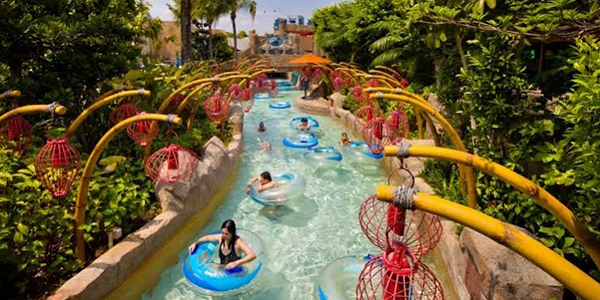 Slide and splash at the Adventure Cove Waterpark