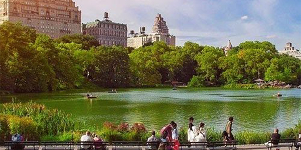 Take a stroll around Central Park, New York