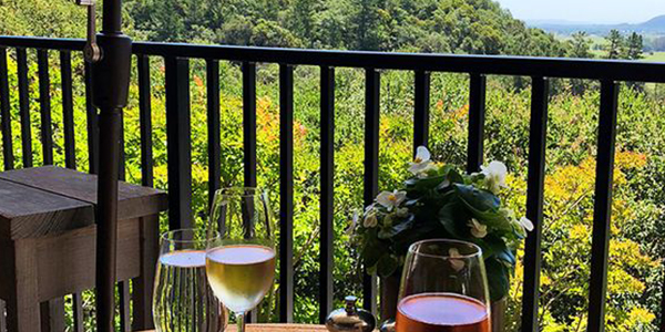 Walk through the gorgeous wineries in the Napa Valley while slurping on delicious wine