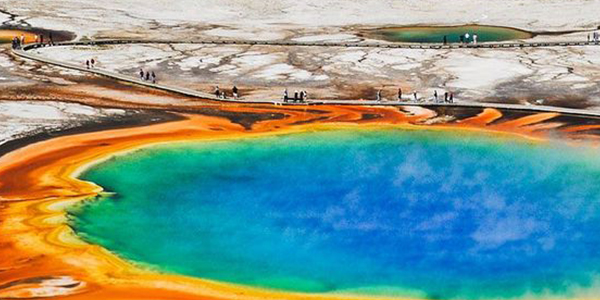 Unveil hydrothermal and geologic wonders at Yellowstone National Park