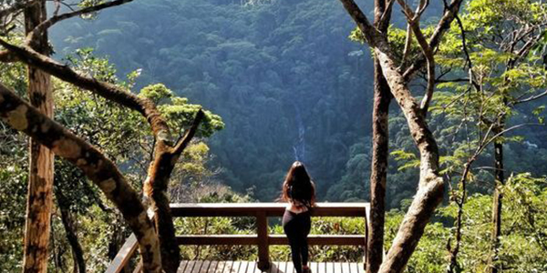 Get lost in Tijuca National Park, Brazil
